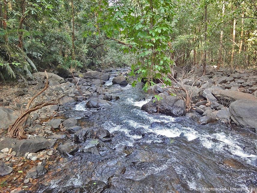Ручей рядом с водопадом Дудхсагар