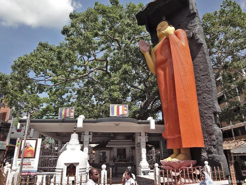 Галле, статуя Будды