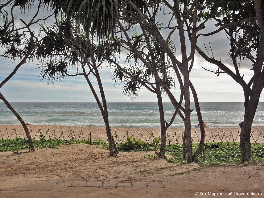 Пляж Коггала