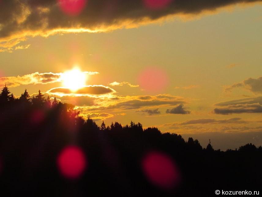 Закат над лесом