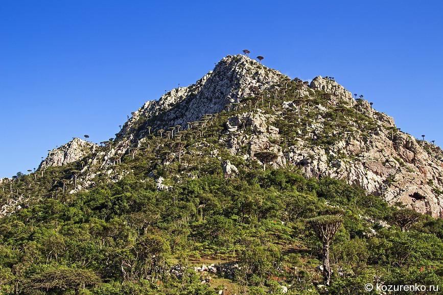 Скалистые горы такие скалистые