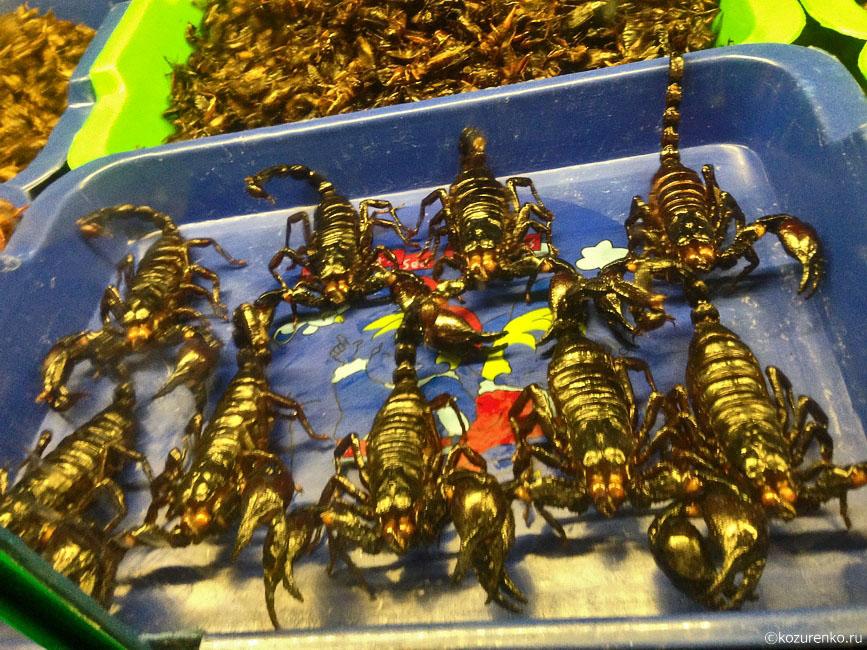 Жареные скорпионы