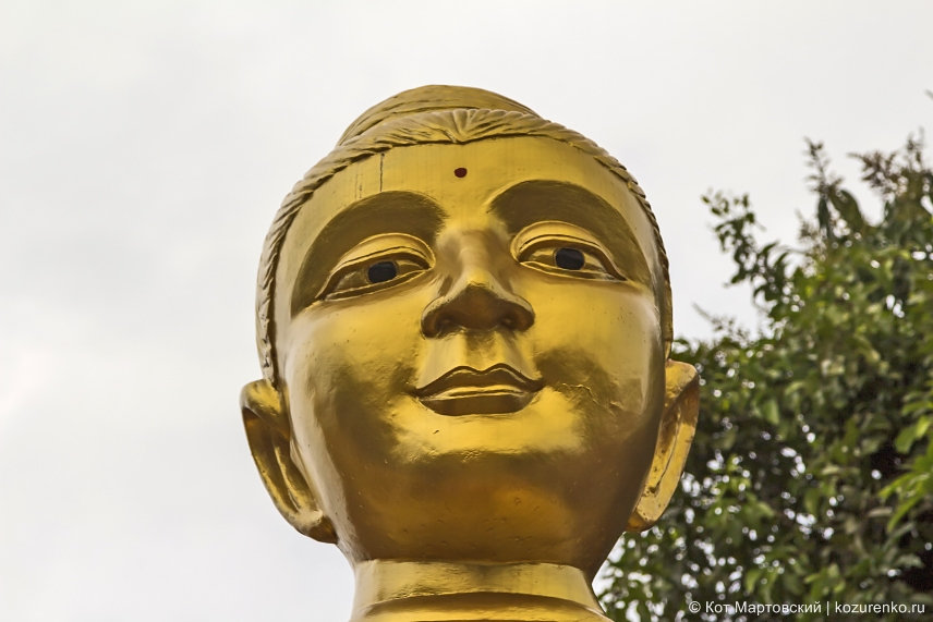 Голова Гаутамы Будды