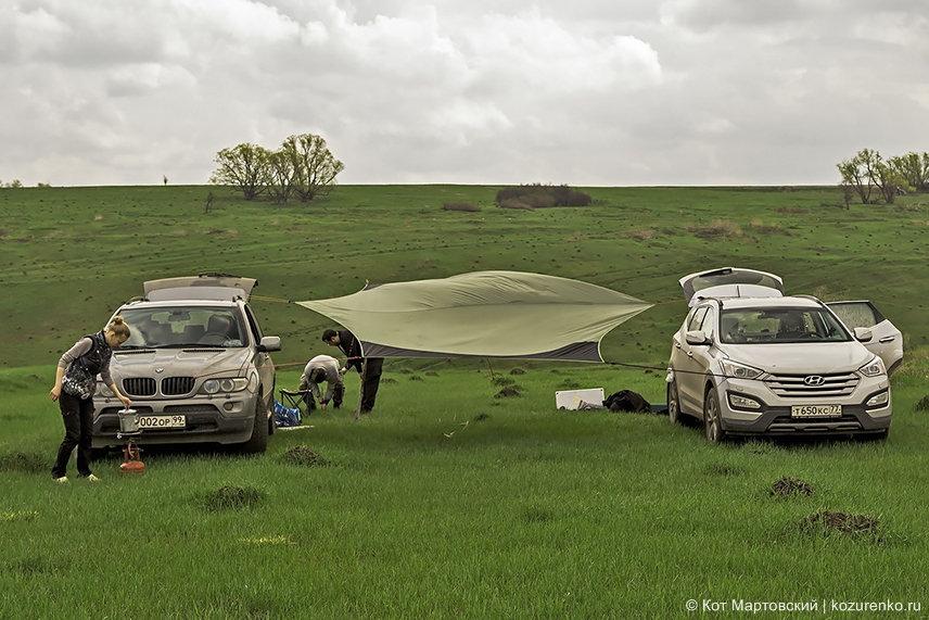 Травка как на поле для гольфа - хочется упасть и валяться!