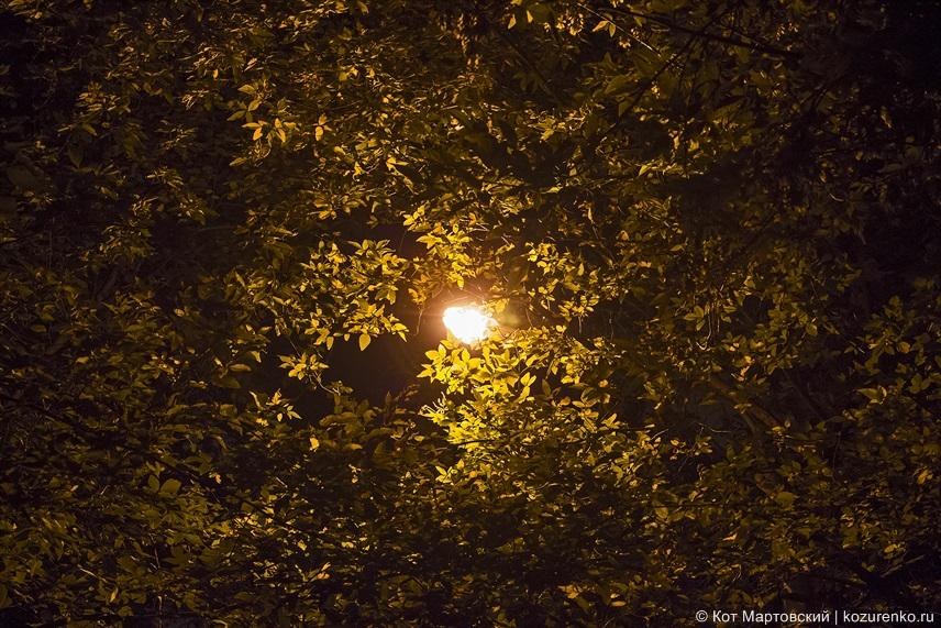 Ночной фонарь