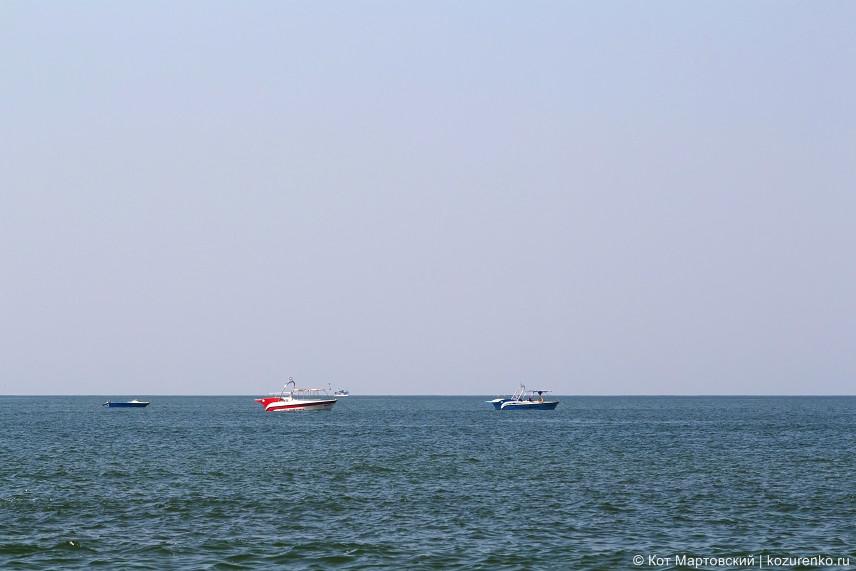 Катеры можно арендовать для морских покатушек