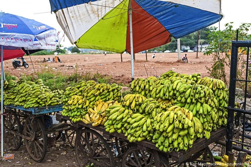 Вот бы укатить такую телегу бананов себе!