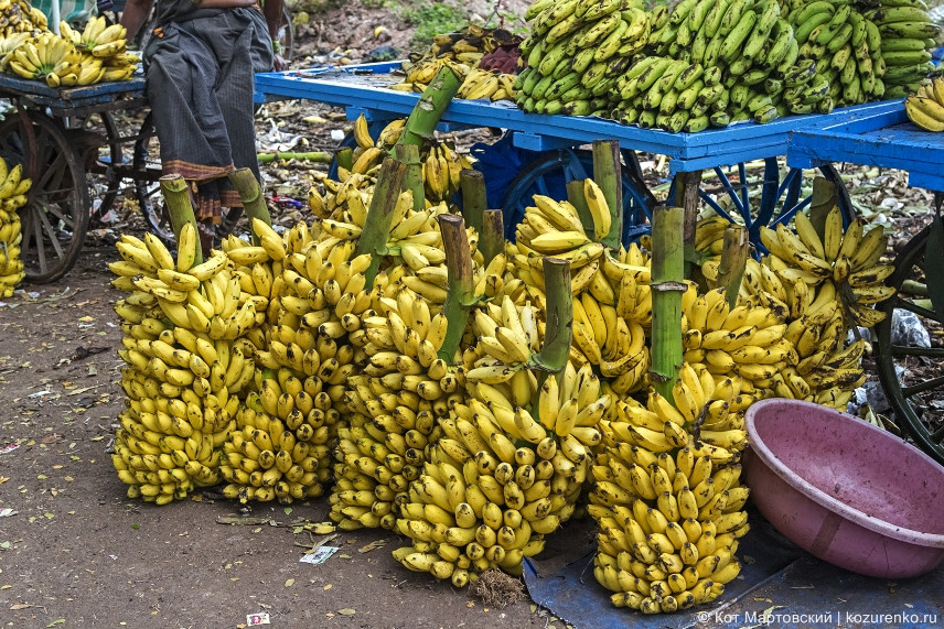 Бананы гроздьями :)