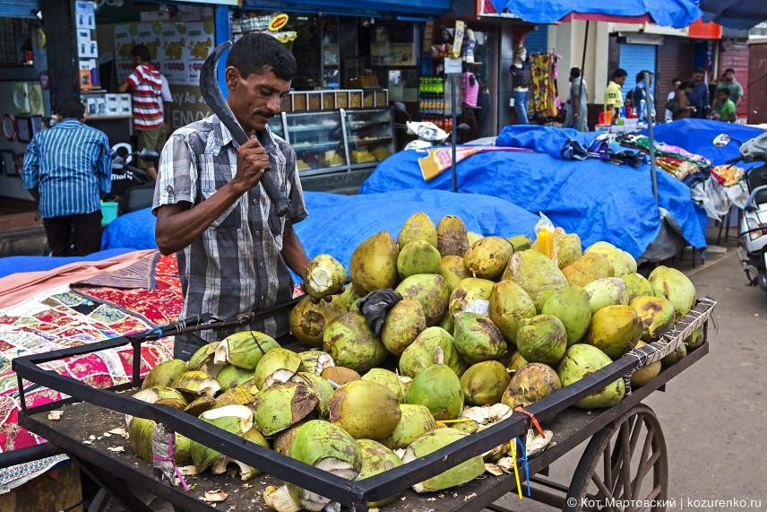 Продавец кокосов тащит свою телегу по рынку в поисках утомленных жаждой продавцов и посетителей